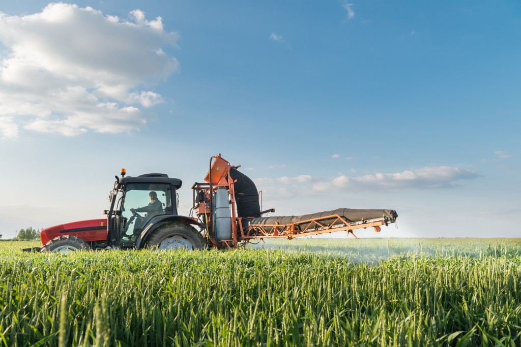 Tractor spraying wheat in spring
