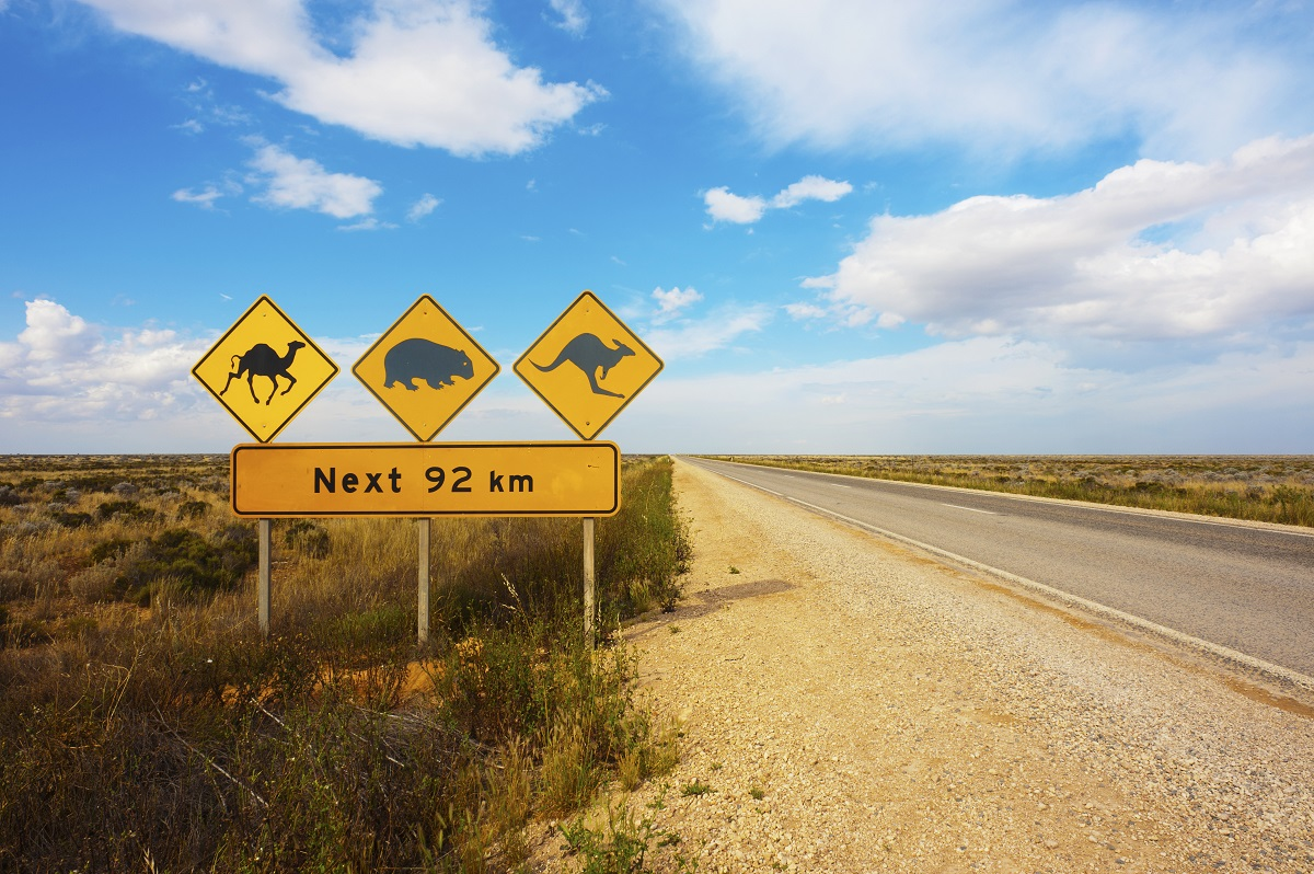 A wildlife warning road sign in the Nullarbor Plain, Australia