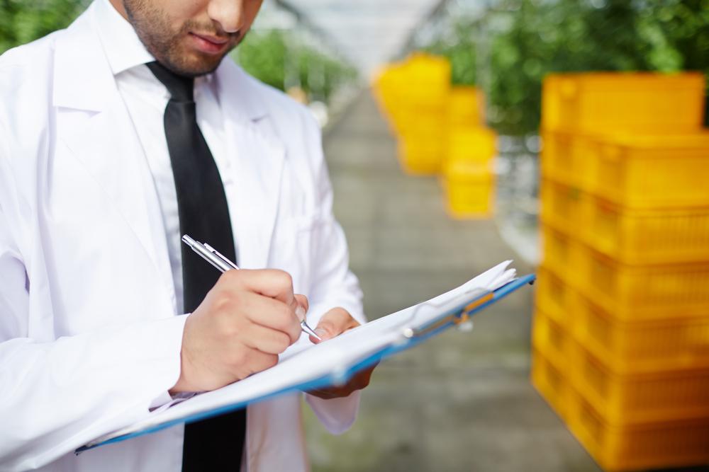 KLT prepravky sú možná riešením i pre váš biznis